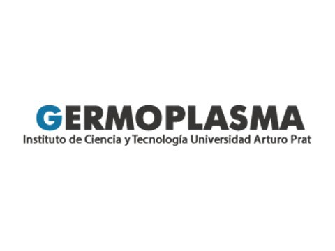 Germoplasma - Marketing Digital en Puerto Montt