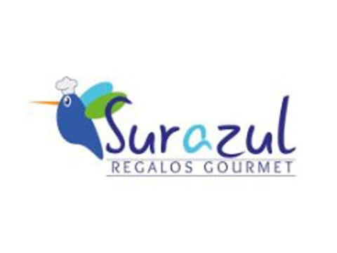 Regalo Sur Azul - Marketing Digital en Puerto Montt