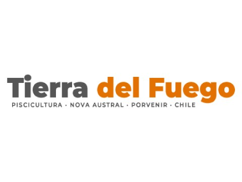 TIERRA DEL FUEGO S.A - Marketing Digital en Puerto Montt